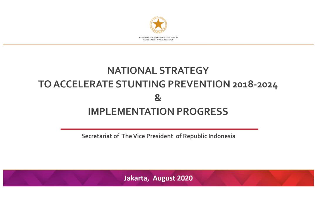 NatStrat and Implementation Progress